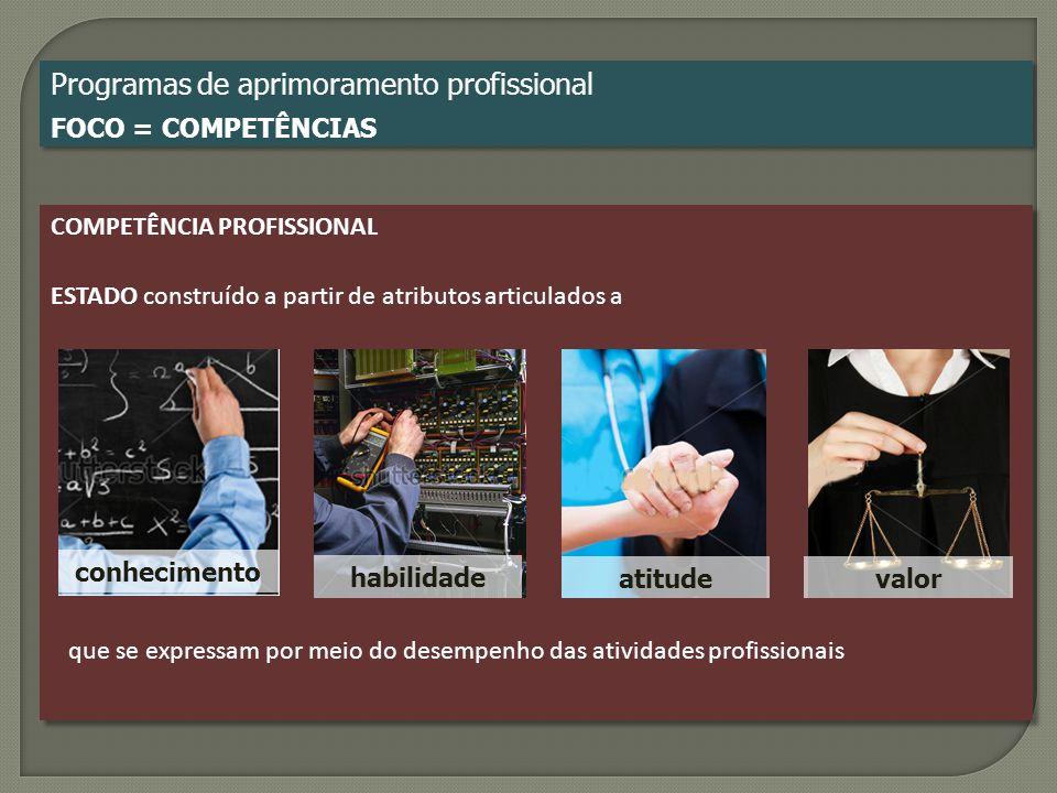 COMPETÊNCIA PROFISSIONAL ESTADO construído a partir de atributos articulados a COMPETÊNCIA PROFISSIONAL ESTADO construído a partir de atributos articu