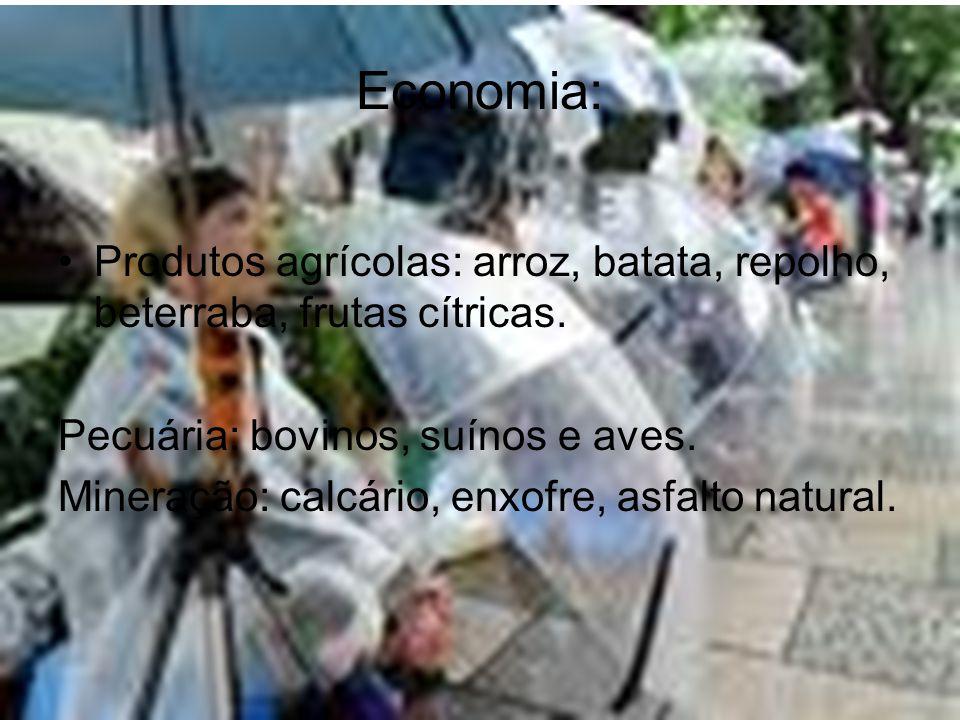 Economia: •Produtos agrícolas: arroz, batata, repolho, beterraba, frutas cítricas. Pecuária: bovinos, suínos e aves. Mineração: calcário, enxofre, asf