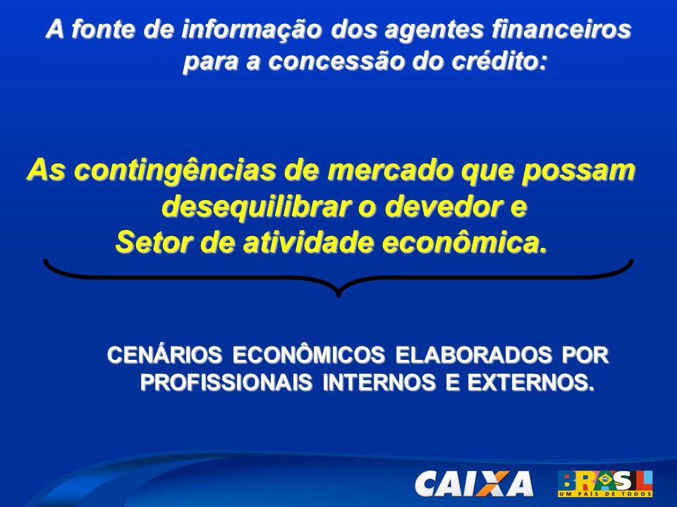 A fonte de informação dos agentes financeiros para a concessão do crédito: CENÁRIOS ECONÔMICOS ELABORADOS POR PROFISSIONAIS INTERNOS E EXTERNOS.