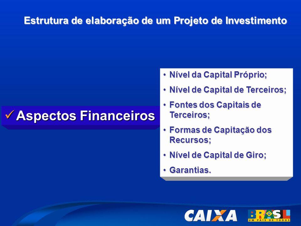 Estrutura de elaboração de um Projeto de Investimento  Aspectos Financeiros •Nível da Capital Próprio; •Nível de Capital de Terceiros; •Fontes dos Ca