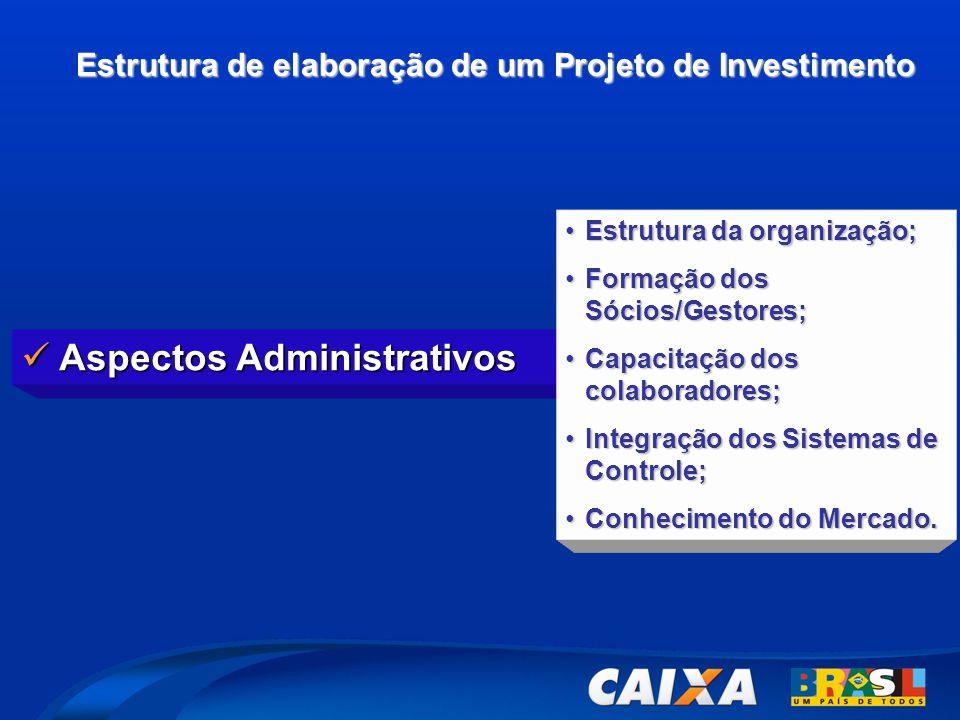 Estrutura de elaboração de um Projeto de Investimento  Aspectos Administrativos •Estrutura da organização; •Formação dos Sócios/Gestores; •Capacitação dos colaboradores; •Integração dos Sistemas de Controle; •Conhecimento do Mercado.