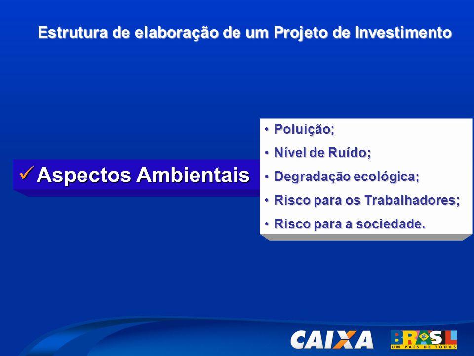 Estrutura de elaboração de um Projeto de Investimento  Aspectos Ambientais •Poluição; •Nível de Ruído; •Degradação ecológica; •Risco para os Trabalha