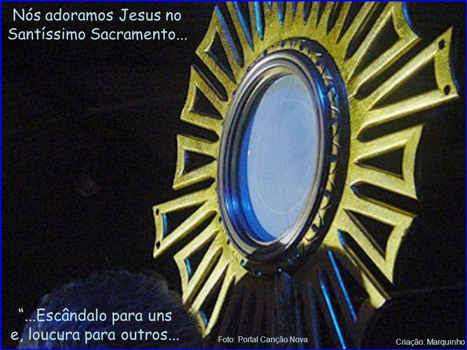Criação: Marquinho Adoro-te Eu Te adoro, ó Cristo, Deus no Santo Altar, Em Teu Sacramento, vivo a palpitar! Dou-te sem partilha, vida e coração, Pois