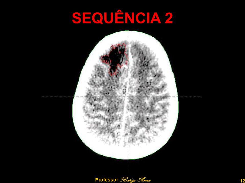 12 Professor Rodrigo Penna SEQUÊNCIA 2