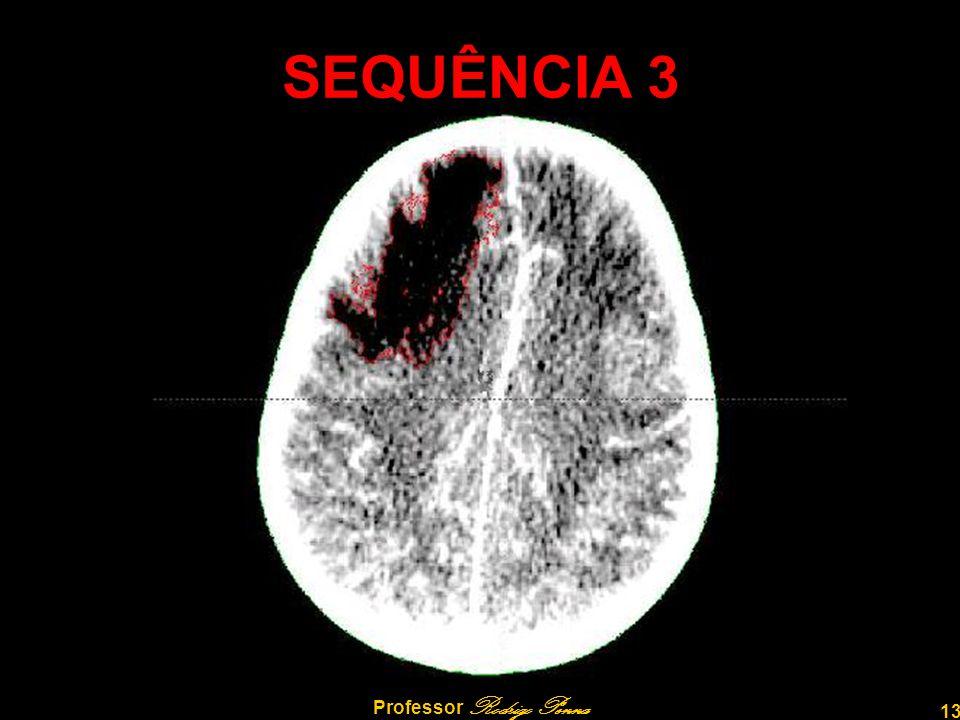 13 Professor Rodrigo Penna SEQUÊNCIA 3