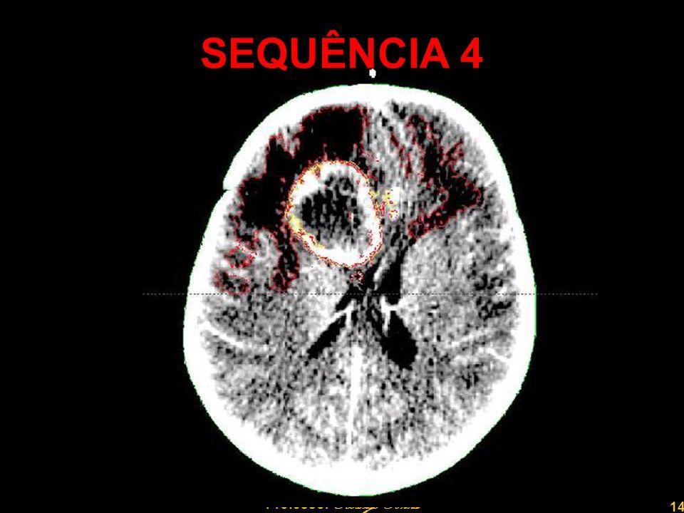 14 Professor Rodrigo Penna SEQUÊNCIA 4