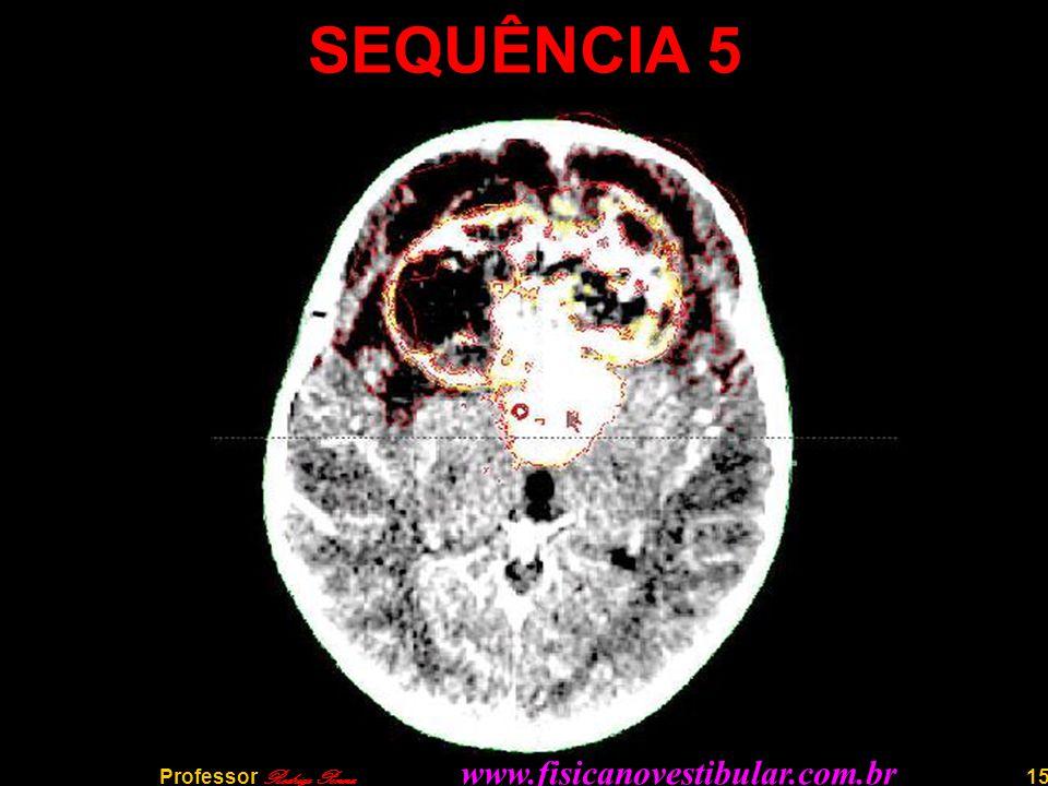 15 SEQUÊNCIA 5 Professor Rodrigo Penna www.fisicanovestibular.com.br
