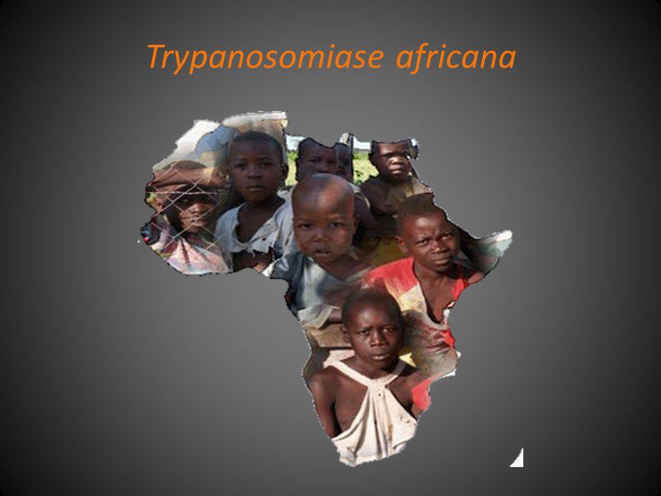Trypanosomiase africana