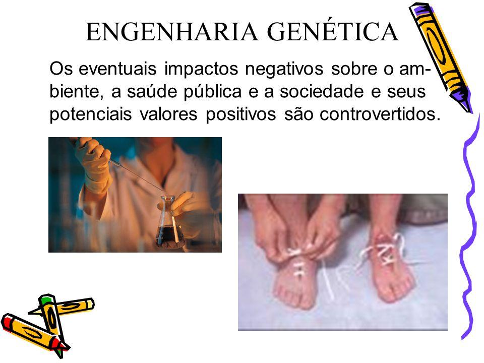 Os eventuais impactos negativos sobre o am- biente, a saúde pública e a sociedade e seus potenciais valores positivos são controvertidos. ENGENHARIA G