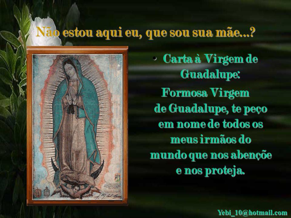 Não estou aqui eu, que sou sua mãe...? Não estou aqui eu, que sou sua mãe...? Nossa Senhora de Guadalupe é milagrosa, peçam algo!!! Yebi_10@hotmail.co