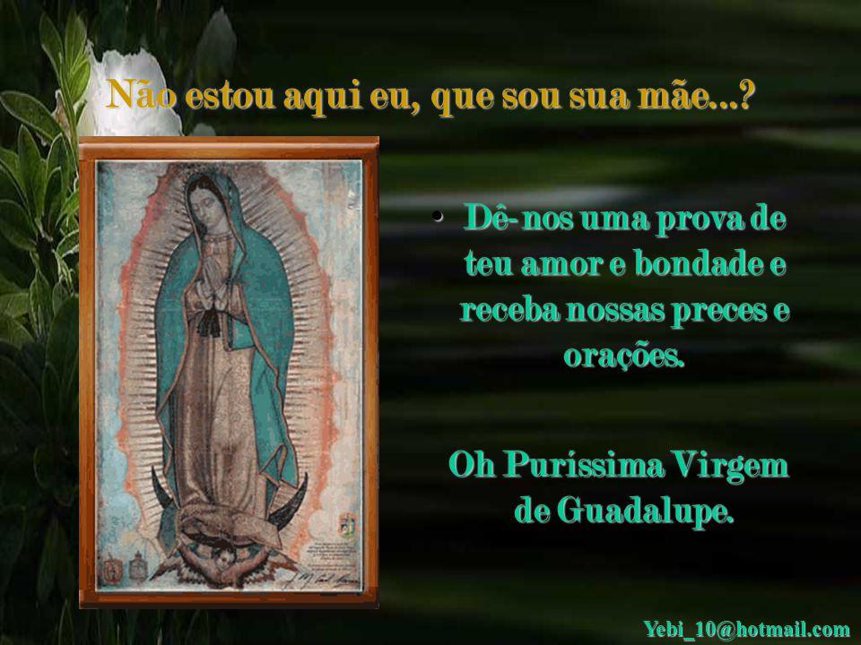 Não estou aqui eu, que sou sua mãe...? • Carta à Virgem de Guadalupe: Formosa Virgem de Guadalupe, te peço em nome de todos os meus irmãos do mundo qu