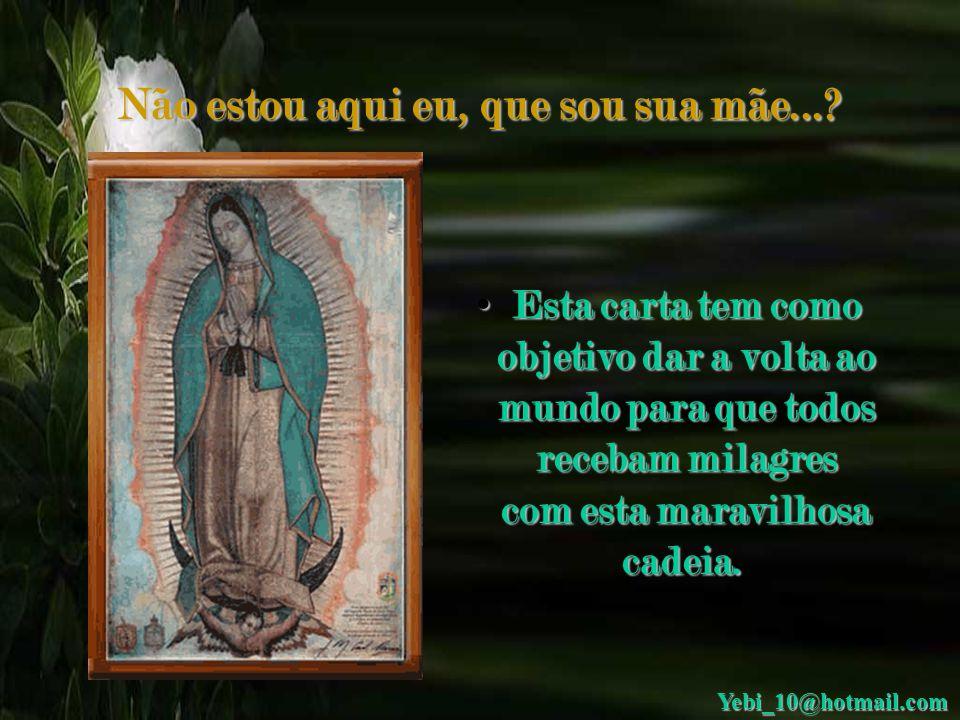 Não estou aqui eu, que sou sua mãe...? • Queridos irmãos, antes de qualquer coisa, quero dizer que a Virgem de Guadalupe é boa, milagrosa e sempre nos