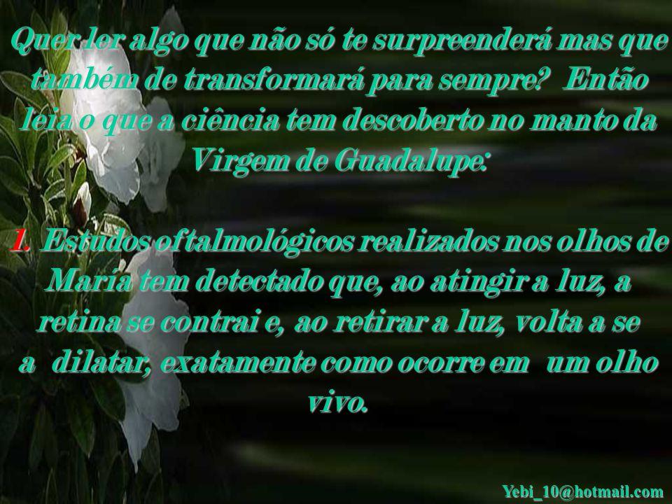 Descobertas no manto da Virgem de Guadalupe Con Sonido Yebi_10@hotmail.com