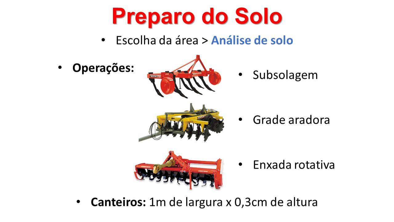 Preparo do Solo • Canteiros: 1m de largura x 0,3cm de altura • Operações: • Subsolagem • Grade aradora • Enxada rotativa • Escolha da área > Análise d