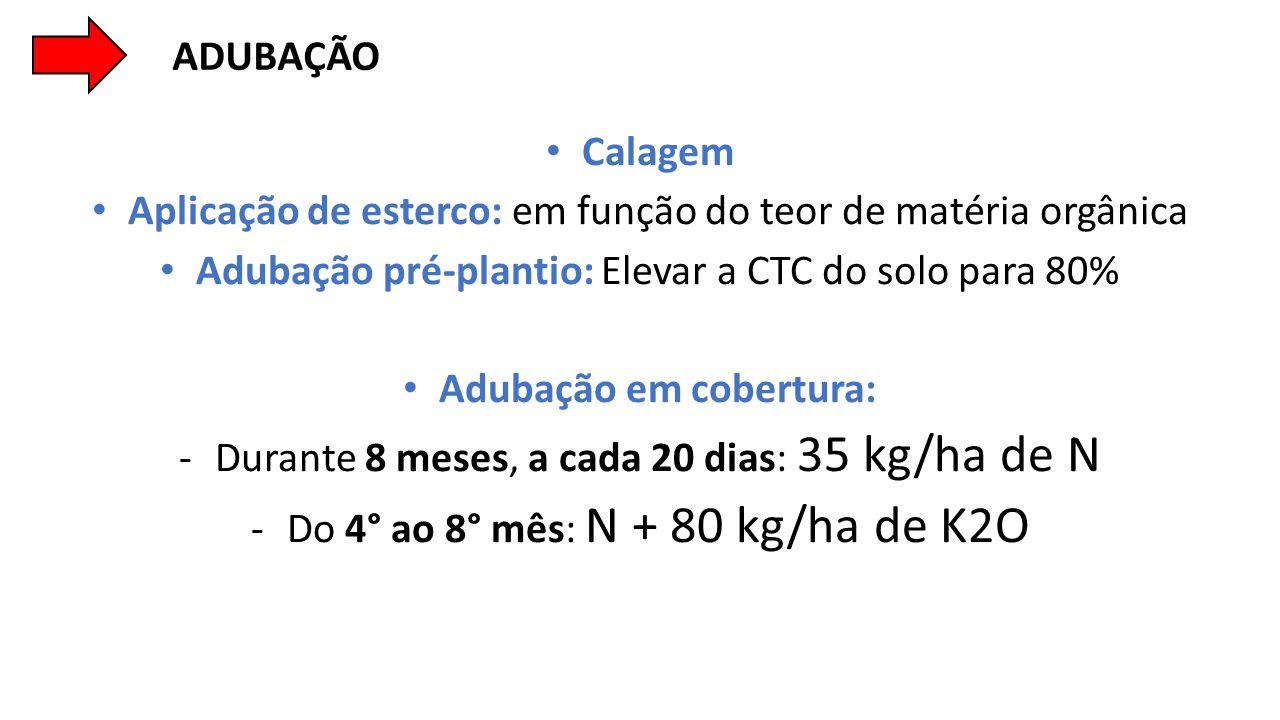 • Calagem • Aplicação de esterco: em função do teor de matéria orgânica • Adubação pré-plantio: Elevar a CTC do solo para 80% • Adubação em cobertura: