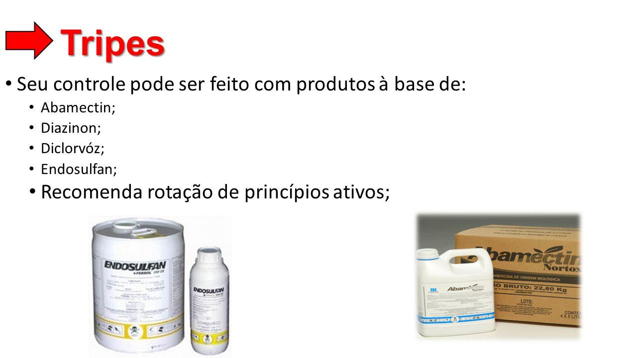 • Seu controle pode ser feito com produtos à base de: • Abamectin; • Diazinon; • Diclorvóz; • Endosulfan; • Recomenda rotação de princípios ativos; Tr