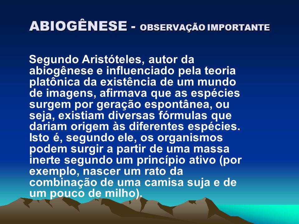 ABIOGÊNESE - OBSERVAÇÃO IMPORTANTE Segundo Aristóteles, autor da abiogênese e influenciado pela teoria platônica da existência de um mundo de imagens,