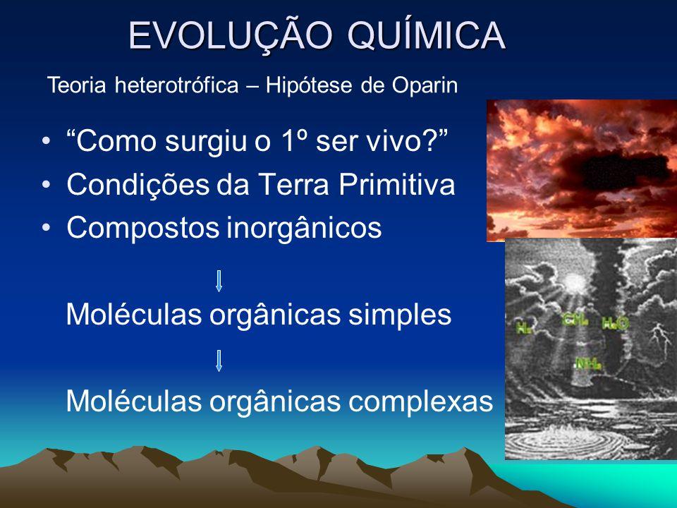 """EVOLUÇÃO QUÍMICA •""""Como surgiu o 1º ser vivo?"""" •Condições da Terra Primitiva •Compostos inorgânicos Moléculas orgânicas simples Moléculas orgânicas co"""