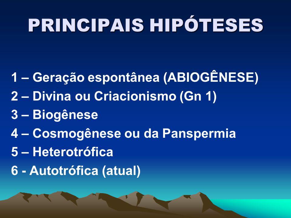 PRINCIPAIS HIPÓTESES 1 – Geração espontânea (ABIOGÊNESE) 2 – Divina ou Criacionismo (Gn 1) 3 – Biogênese 4 – Cosmogênese ou da Panspermia 5 – Heterotr