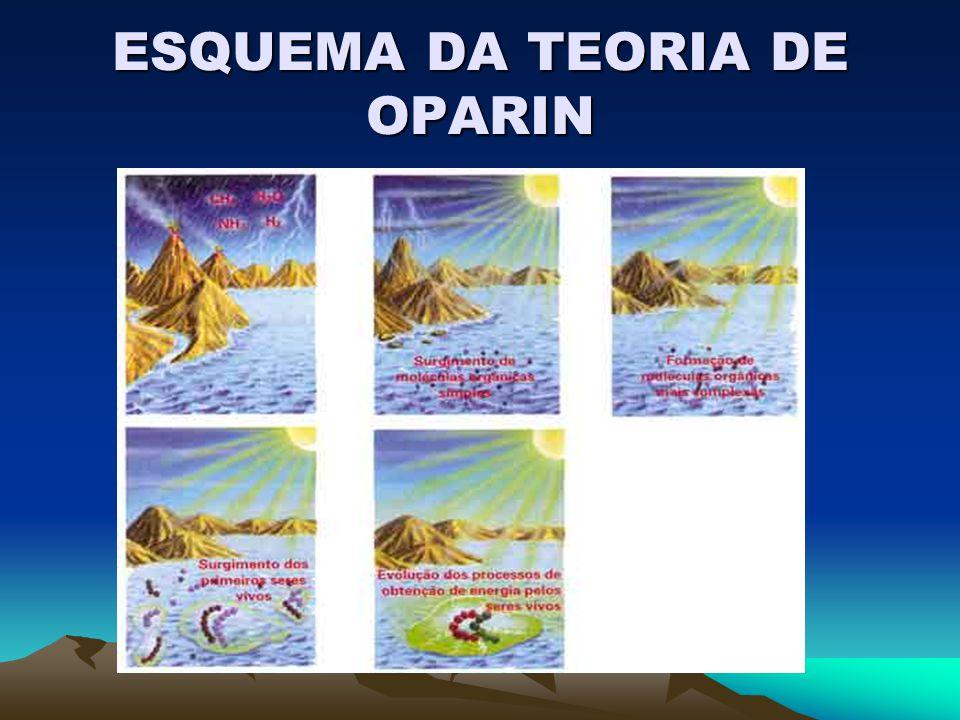 ESQUEMA DA TEORIA DE OPARIN