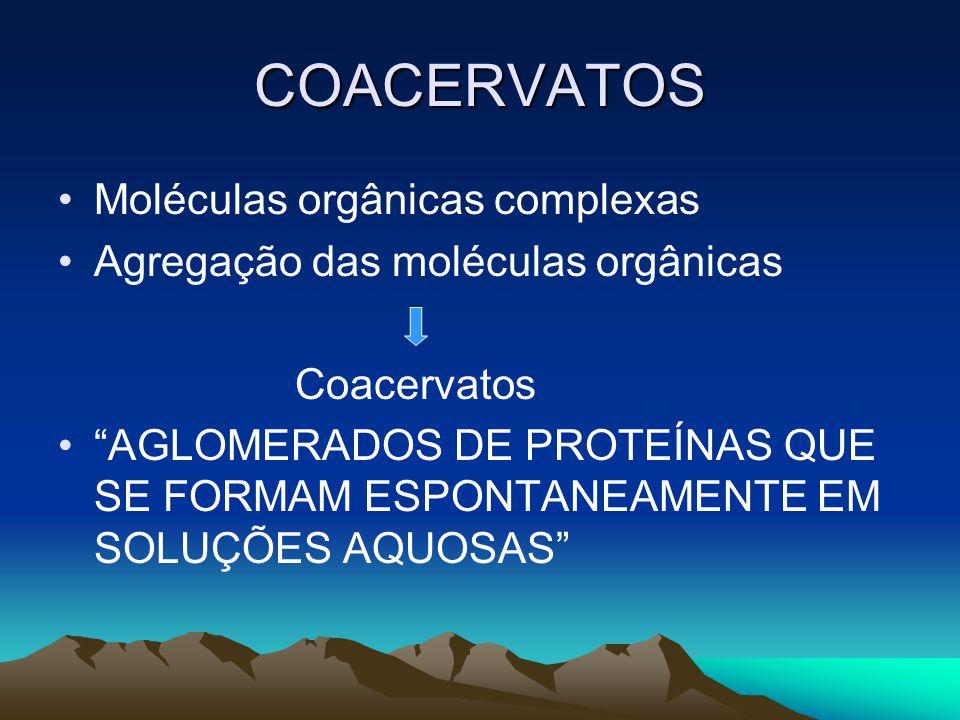 """COACERVATOS •Moléculas orgânicas complexas •Agregação das moléculas orgânicas Coacervatos •""""AGLOMERADOS DE PROTEÍNAS QUE SE FORMAM ESPONTANEAMENTE EM"""