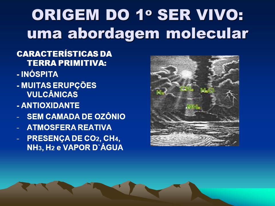 ORIGEM DO 1 o SER VIVO: uma abordagem molecular CARACTERÍSTICAS DA TERRA PRIMITIVA: - INÓSPITA - MUITAS ERUPÇÕES VULCÂNICAS - ANTIOXIDANTE -SEM CAMADA