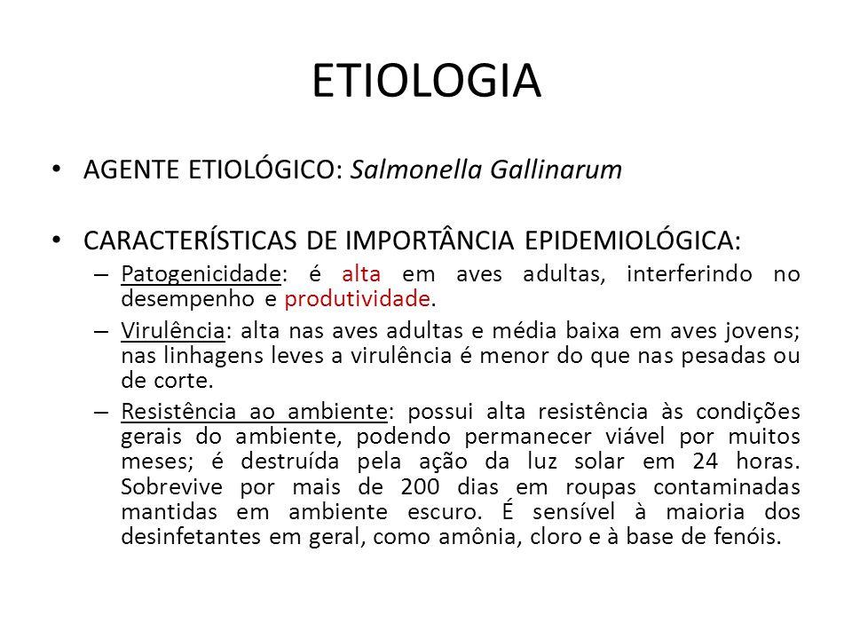 ETIOLOGIA • AGENTE ETIOLÓGICO: Salmonella Gallinarum • CARACTERÍSTICAS DE IMPORTÂNCIA EPIDEMIOLÓGICA: – Patogenicidade: é alta em aves adultas, interferindo no desempenho e produtividade.