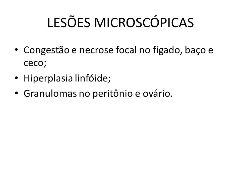 CADEIA EPIDEMIOLÓGICA • Fonte de infecção: portadores e reservatórios.
