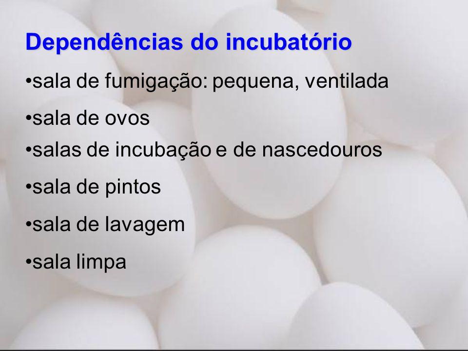 Dependências do incubatório •sala de fumigação: pequena, ventilada •sala de ovos •salas de incubação e de nascedouros •sala de pintos •sala de lavagem •sala limpa