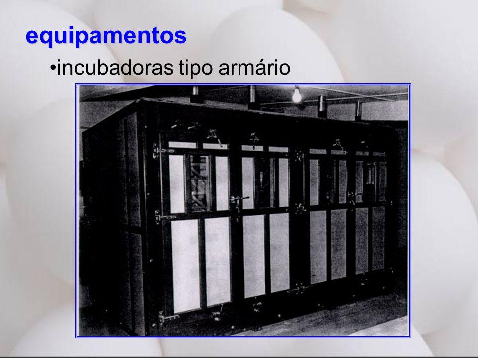 equipamentos •incubadoras tipo armário