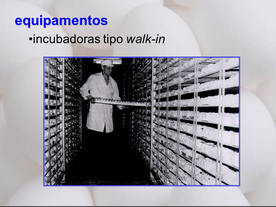 equipamentos •incubadoras tipo walk-in