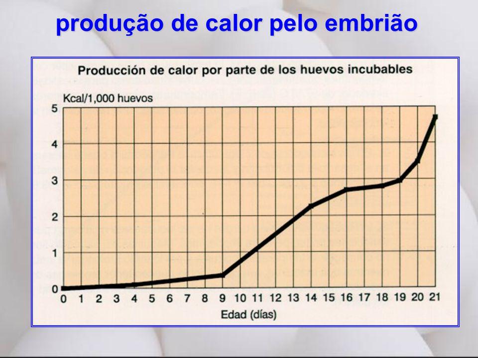 produção de calor pelo embrião
