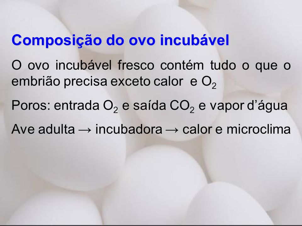 Composição do ovo incubável O ovo incubável fresco contém tudo o que o embrião precisa exceto calor e O 2 Poros: entrada O 2 e saída CO 2 e vapor d'água Ave adulta → incubadora → calor e microclima