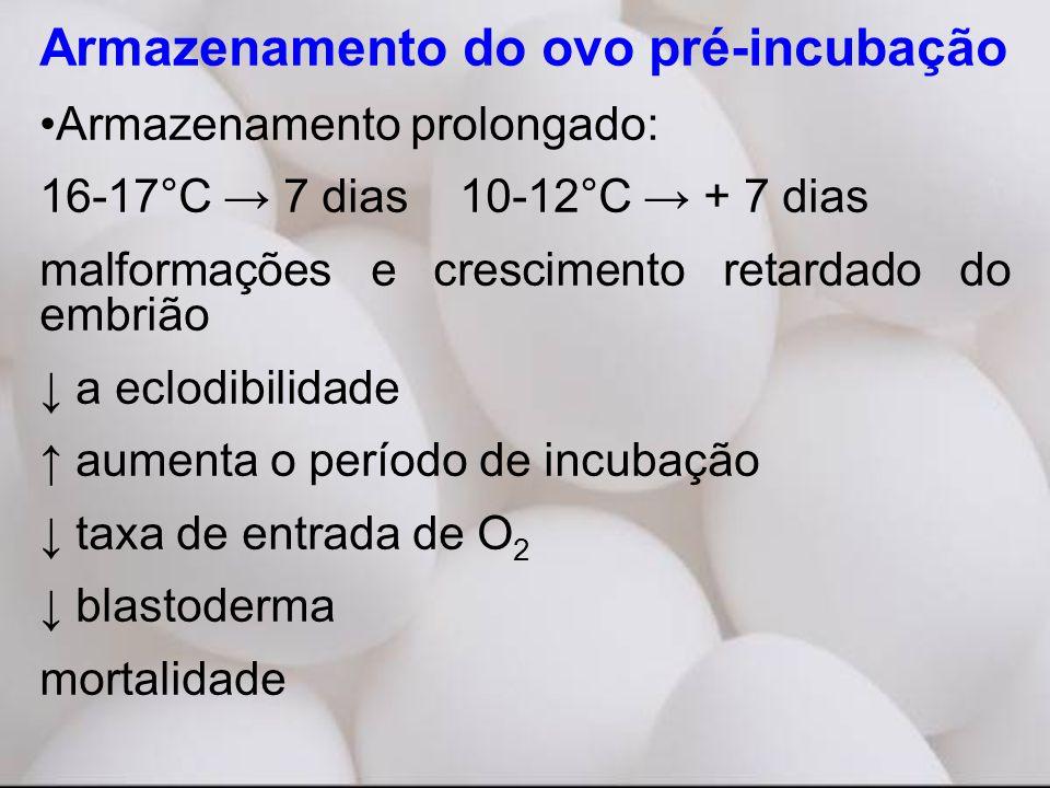 Armazenamento do ovo pré-incubação •Armazenamento prolongado: 16-17°C → 7 dias10-12°C → + 7 dias malformações e crescimento retardado do embrião ↓ a eclodibilidade ↑ aumenta o período de incubação ↓ taxa de entrada de O 2 ↓ blastoderma mortalidade