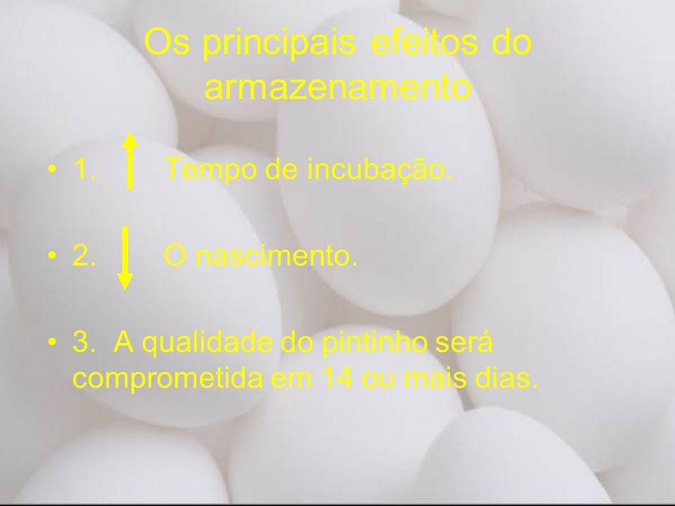 Os principais efeitos do armazenamento •1. Tempo de incubação. •2. O nascimento. •3. A qualidade do pintinho será comprometida em 14 ou mais dias.
