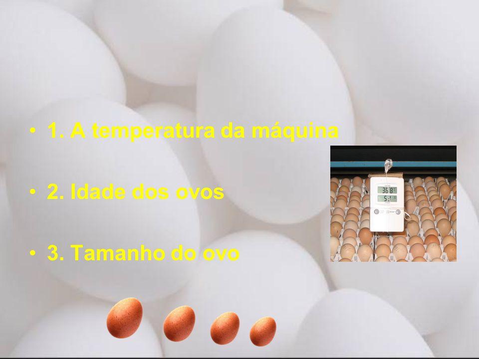 •1. A temperatura da máquina •2. Idade dos ovos •3. Tamanho do ovo