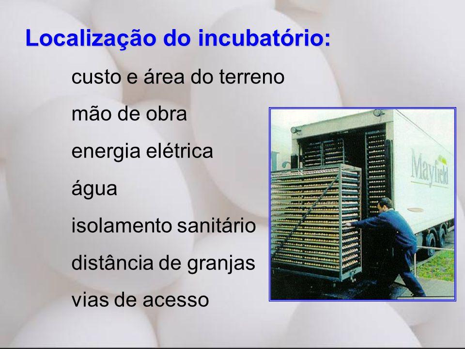 Localização do incubatório: custo e área do terreno mão de obra energia elétrica água isolamento sanitário distância de granjas vias de acesso