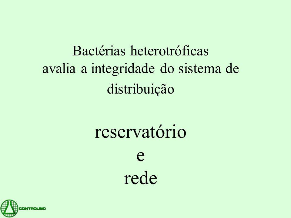 Bactérias heterotróficas avalia a integridade do sistema de distribuição reservatório e rede