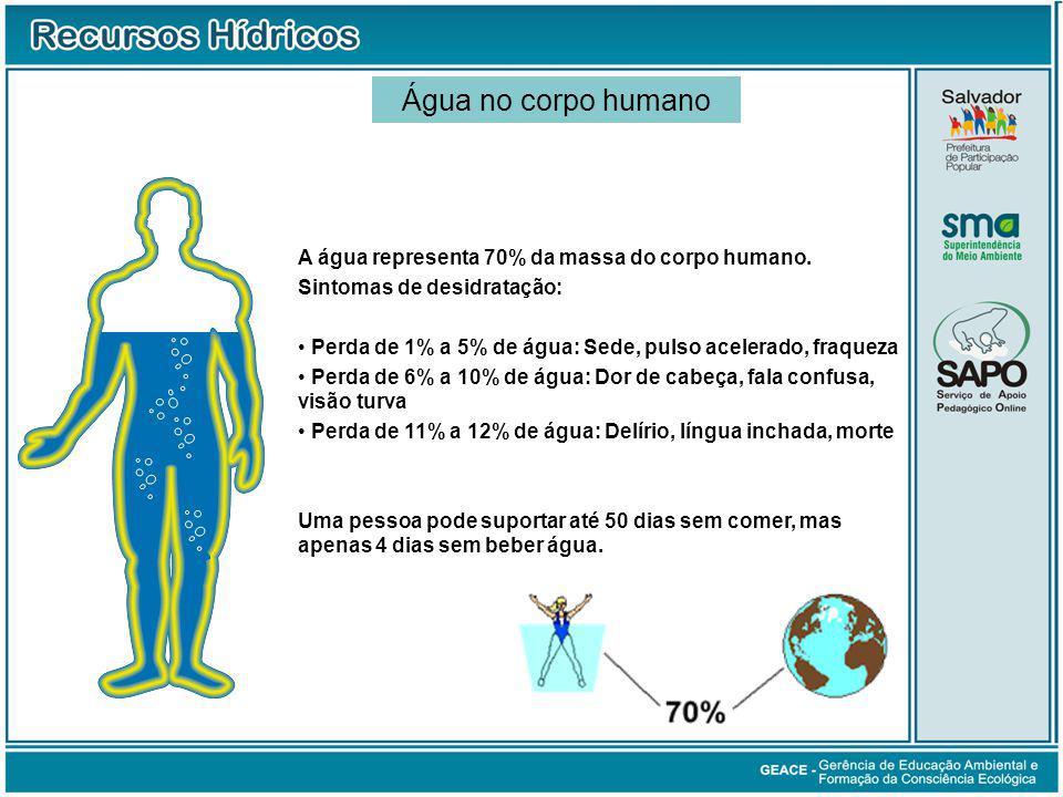 A água representa 70% da massa do corpo humano.