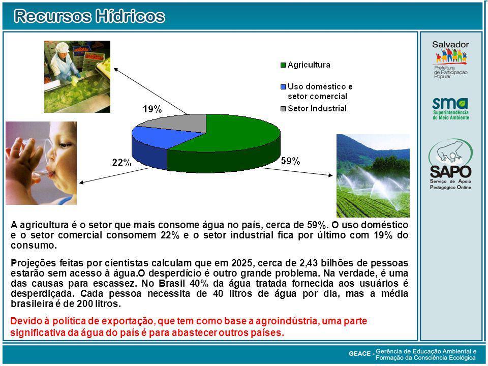 A agricultura é o setor que mais consome água no país, cerca de 59%.