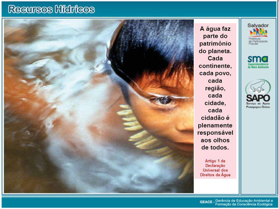 A água faz parte do patrimônio do planeta. Cada continente, cada povo, cada região, cada cidade, cada cidadão é plenamente responsável aos olhos de to