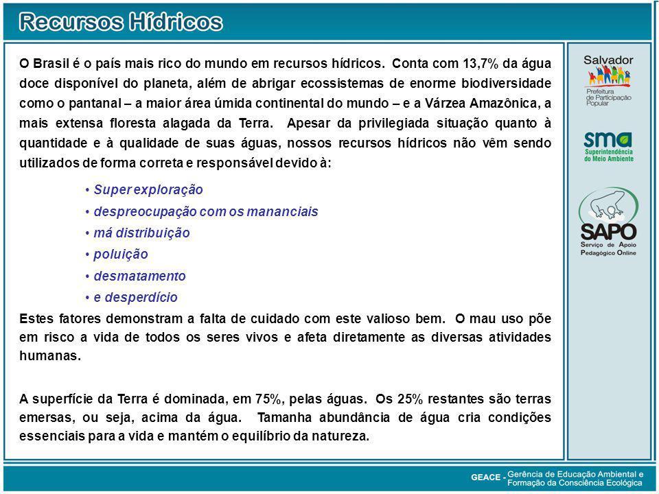 O Brasil é o país mais rico do mundo em recursos hídricos.