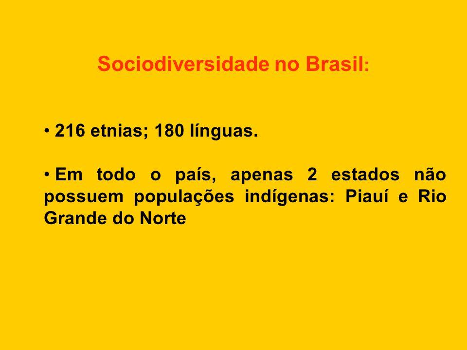 Sociodiversidade no Brasil : • 216 etnias; 180 línguas. • Em todo o país, apenas 2 estados não possuem populações indígenas: Piauí e Rio Grande do Nor