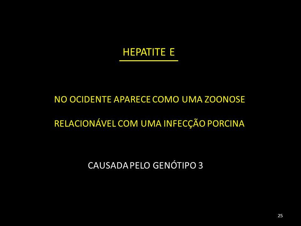 HEPATITE E 25 NO OCIDENTE APARECE COMO UMA ZOONOSE RELACIONÁVEL COM UMA INFECÇÃO PORCINA CAUSADA PELO GENÓTIPO 3