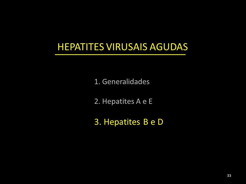 HEPATITES VIRUSAIS AGUDAS 33 1. Generalidades 2. Hepatites A e E 3. Hepatites B e D