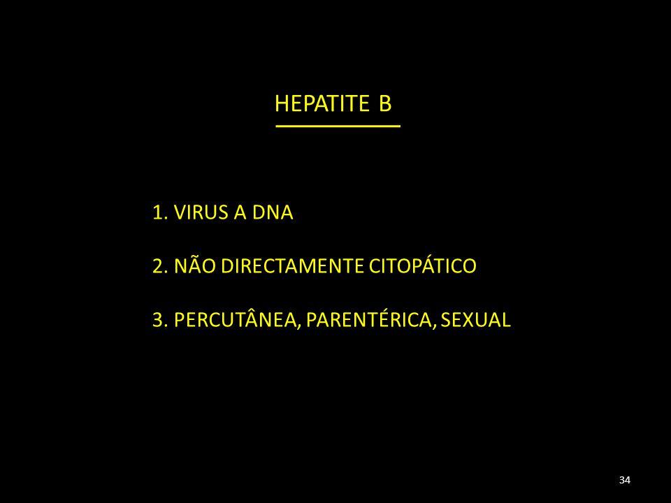 HEPATITE B 1. VIRUS A DNA 2. NÃO DIRECTAMENTE CITOPÁTICO 3. PERCUTÂNEA, PARENTÉRICA, SEXUAL 34