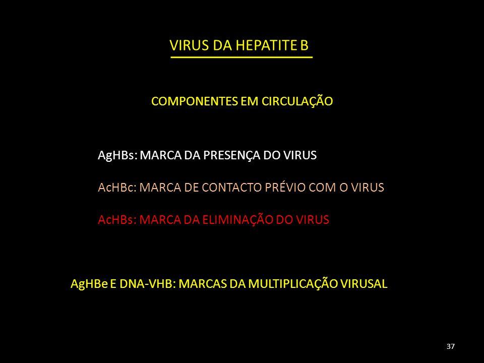 VIRUS DA HEPATITE B AgHBs: MARCA DA PRESENÇA DO VIRUS AcHBc: MARCA DE CONTACTO PRÉVIO COM O VIRUS AcHBs: MARCA DA ELIMINAÇÃO DO VIRUS AgHBe E DNA-VHB: MARCAS DA MULTIPLICAÇÃO VIRUSAL 37 COMPONENTES EM CIRCULAÇÃO
