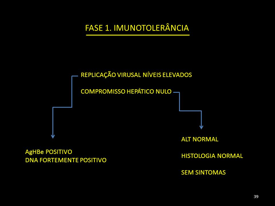 FASE 1.