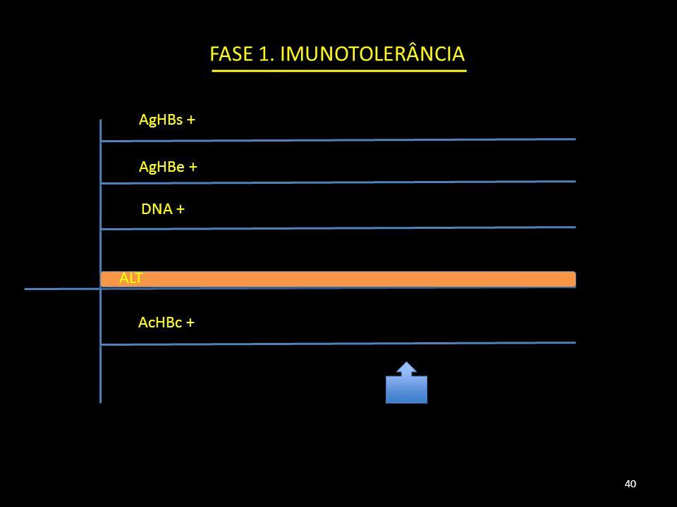 AgHBs + AgHBe + DNA + AcHBc + ALT FASE 1. IMUNOTOLERÂNCIA 40