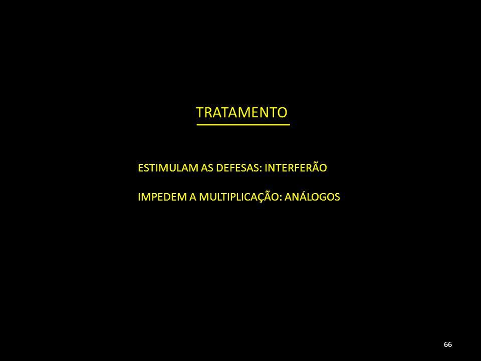 TRATAMENTO ESTIMULAM AS DEFESAS: INTERFERÃO IMPEDEM A MULTIPLICAÇÃO: ANÁLOGOS 66